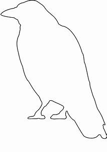 Simple Raven Outline Images | Collection 17+ Wallpapers