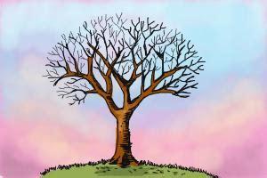 draw  tree  leaves drawingnow