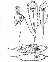 Peacock Coloring Feathers Hawk sketch template