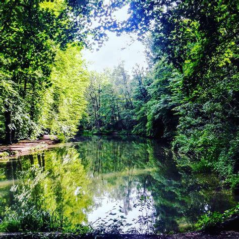Englischer Garten Nördlicher Teil by Romantisch Englischer Garten Nordteil Hurra Draussen