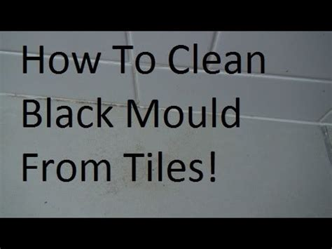 clean black mold mould  bathroom tiles youtube