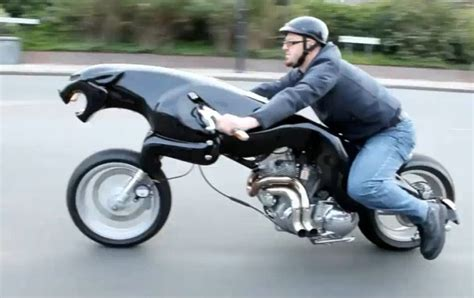 Video Jaguar Leaping Cat Motorcycle Now A Runner