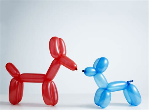 balloon animals five balloon animals you need to know for parties