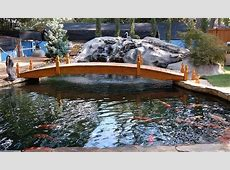 Atlanta Koi Pond is the place to find Japanese Koi in