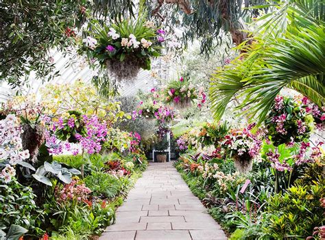 go inside the gorgeous orchid show at the new york