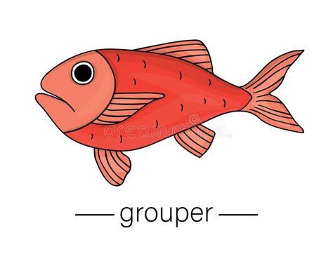 grouper cartoon fish vector icon underwater colored sea redfish vettore gekleurde illustrazione clip barsch illustrations vektor animal bambino colorato incorniciati