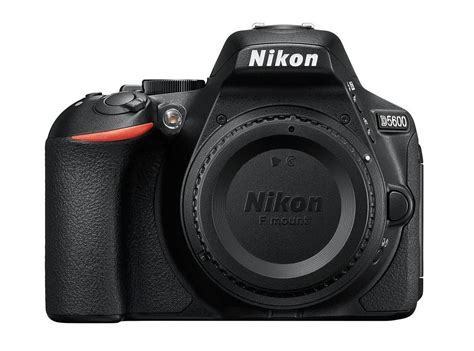 best entry level dslr and mirrorless cameras of 2019