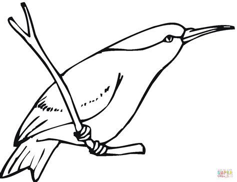 Dibujo De Colibr De Allen Para Colorear Dibujos Para