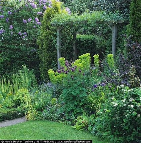 gardening pacific northwest gardens backyards and spring on pinterest