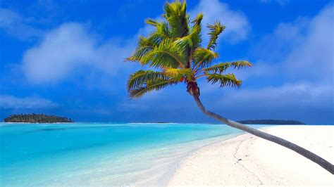 ordinateur bureau hp maldives island for sale aoc