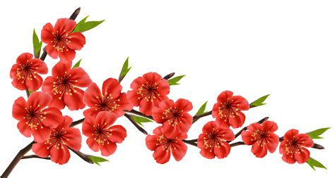 Red Flower Clipart Transparent Free Collection Download