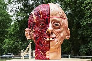 Sonsbeek 2016  Kunst Als Voertuig Engagement En Utopie - Museumkijker Nl