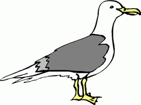 Seagull Clipart Seagull Clipart Clipart Panda Free Clipart Images