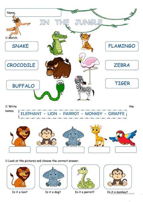 jungle worksheet  esl printable worksheets