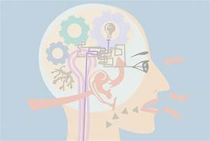 Sensory Memory 101 @ ImproveMemory.org - Play Memory Games ...