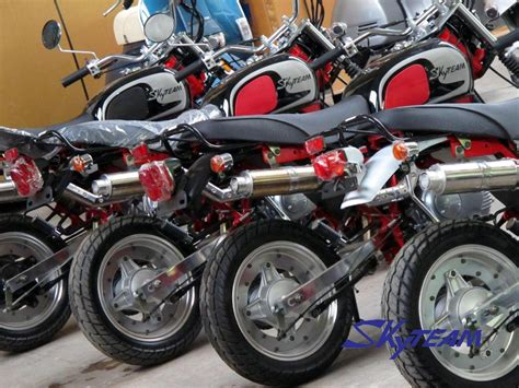 Skyteam 50cc And 125cc Ape Cobra Monkey Motorcycle (eec