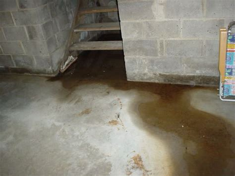 What Is Causing Water To Leak Into My Basement? Nusite