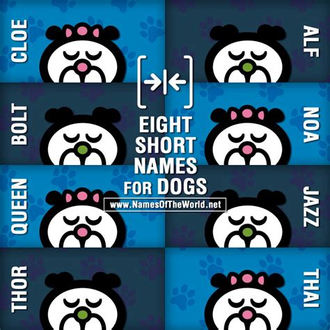 short  syllable names  dogs
