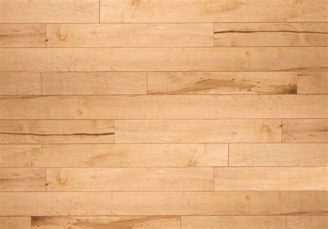 Maple Hardwood Flooring Hardness by Calypso Ambiance Maple Pacific Exclusive