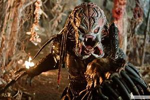 Predators (2010 movie) images Predator HD wallpaper and ...