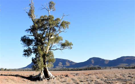 finders rangers part  south australia   april