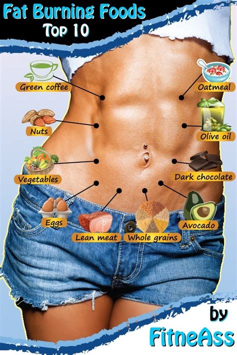 top  fat burning foods    lose weight fitneass
