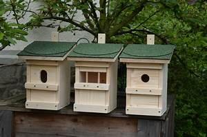 Futterhaus Für Vögel : 3 nistkasten nistk sten futterhaus f r v gel neu mit ~ Articles-book.com Haus und Dekorationen