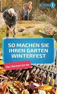Pflanzen Winterfest Machen : herbst so machen sie ihren garten winterfest pflanzen ~ A.2002-acura-tl-radio.info Haus und Dekorationen