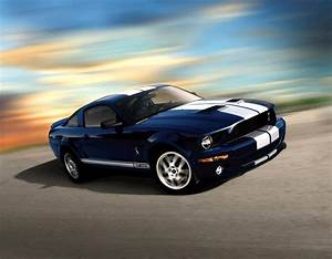 Ford Mustang Shelby Occasion : 2009 ford shelby gt 500 ~ Gottalentnigeria.com Avis de Voitures