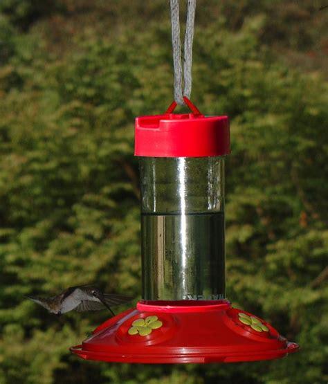 songbird essentials dr jb s 16 ounce clean hummingbird