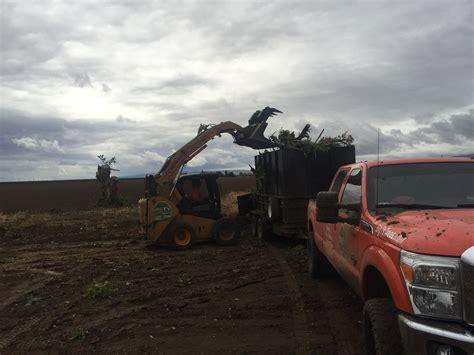 mud wrestling  colusa ca big ts hardwood outlet