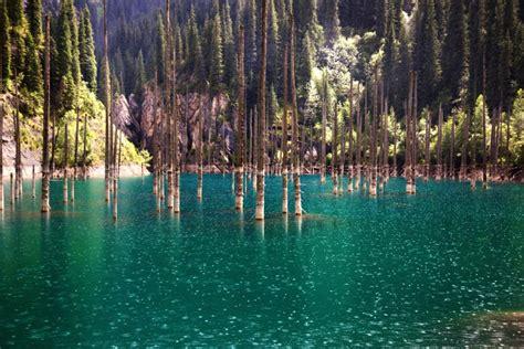 Kazakhstan Nature. National parks and reserves