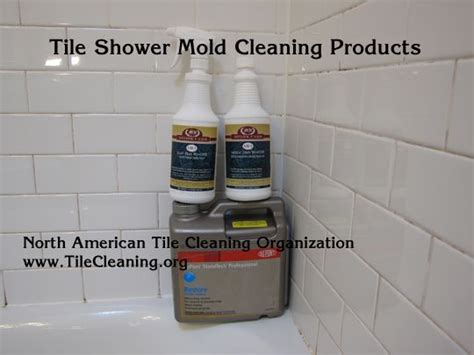 1000 ideas about shower mold cleaner on