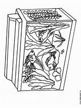 Aquarium Coloring Plant Ausmalbilder Template Templates Malvorlagen Ausdrucken Kostenlos Zum sketch template