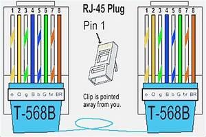 Cat 5 Wiring Diagram B  U2013 Moesappaloosas Com