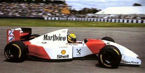 Pin on Senna