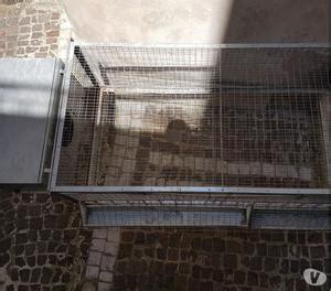 gabbie per conigli nani usate gabbie per conigli posot class
