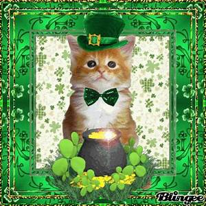 Cat on happy st patrick's day Picture #128381462 | Blingee.com