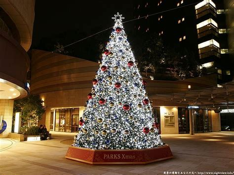 outdoor christmas trees images  pinterest