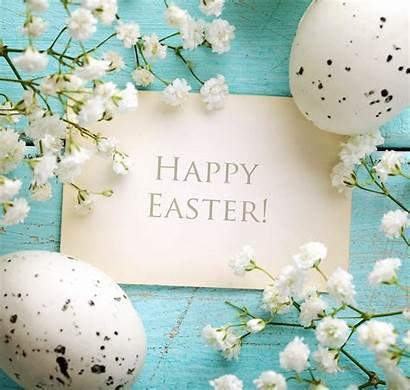 Easter Spring Happy Flowers Flower Eggs Pastel