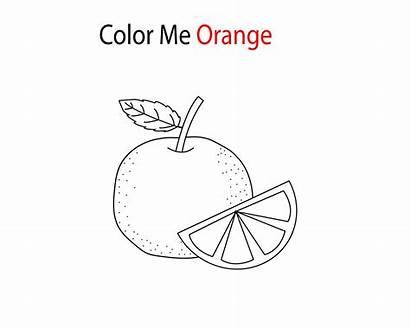 Orange Coloring Fruit Very Preschool Fill Freecoloring