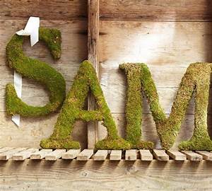 Live moss letter traditional home decor sacramento for Live moss letters