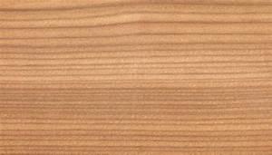 Feuchtes Holz Erkennen : europ ische l rche holzstruktur holzarten pinterest l rche und holz ~ Whattoseeinmadrid.com Haus und Dekorationen