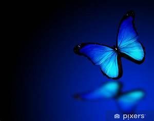 Papier Peint Bleu Foncé : papier peint papillon morpho bleu sur fond bleu fonc pixers nous vivons pour changer ~ Melissatoandfro.com Idées de Décoration