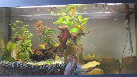 faire baisser nitrate aquarium comment baisser les nitrates
