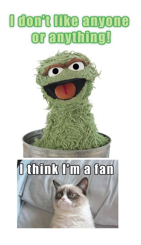 Oscar The Grouch Meme - grumpy cat art pinterest