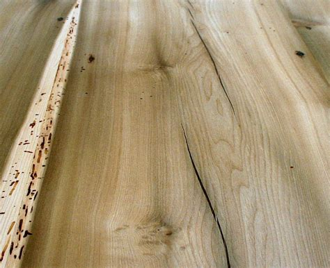 poplar wood flooring pin by tony mayhew on flooring pinterest