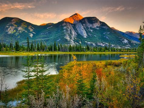 natural beauties canada landscape rocky mountains pine