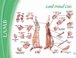 Lamb Cutting Chart Mays Meats