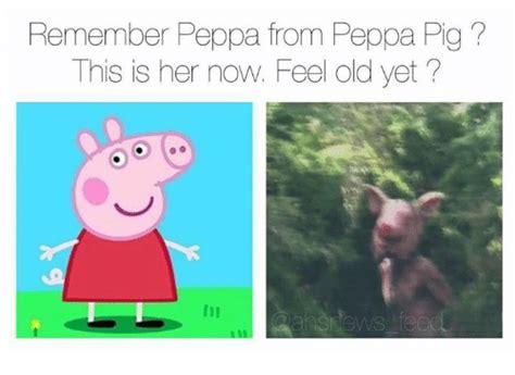 Peppa Pig Memes - 25 best memes about peppa pig peppa pig memes